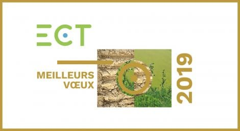 Voeux 2019 groupe ECT