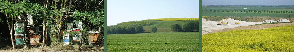 ECT_Rendre-des-terres-a-l-agriculture