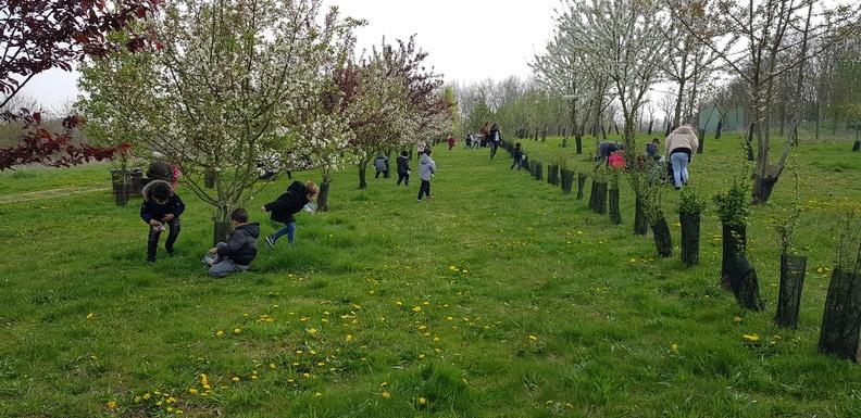 Chasse aux oeufs site de Villeneuve-sous-Dammartin - Avril 2019