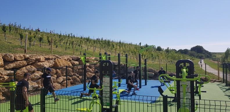 Parc de l'Arboretum - Zone de street workout